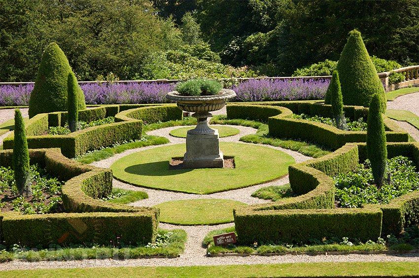 Регулярный сад: особенности дизайна в фото примерах